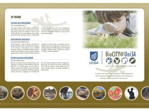 Adelaide Website brochure Design