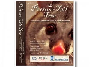 possum tail tree book cover graphic design